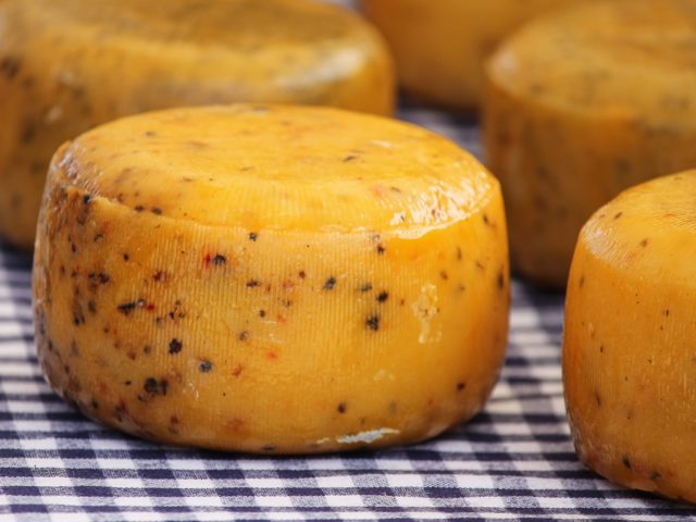 Projeto que beneficia comércio e fabricação de queijos artesanais agora é Lei