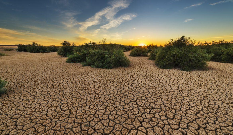 Junho foi o mês mais quente já registrado, diz NOOA
