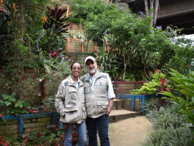 Medellín, na Colômbia, cria corredores verdes para combater o calor