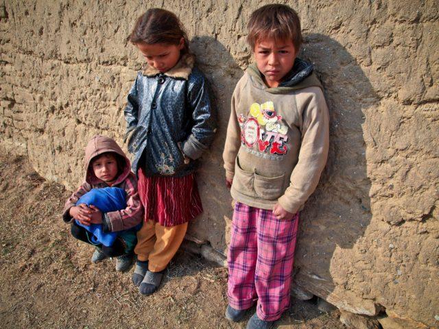 FAO lista 5 ações em tempos de crise climática para erradicar fome no mundo