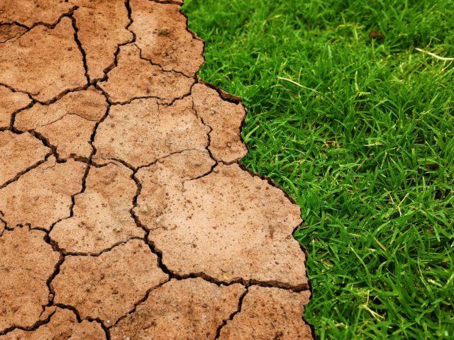Países concordam em unir combate às mudanças climáticas à proteção social