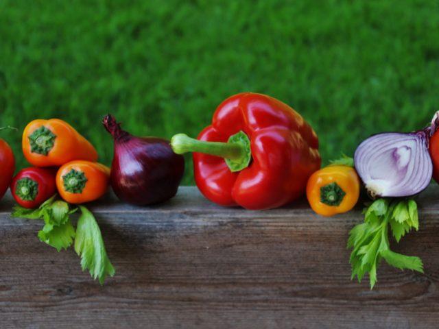 FAO defende impulso a sistemas alimentares saudáveis e sustentáveis no Brasil