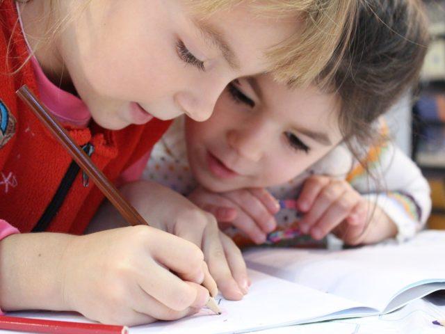 PNUMA lança cartilha para crianças sobre Direitos e o Meio Ambiente