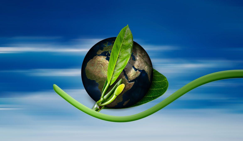 RenovaBio entra em vigor, com a proposta de contribuir para a redução do impacto ambiental e desenvolvimento do setor de bioenergia