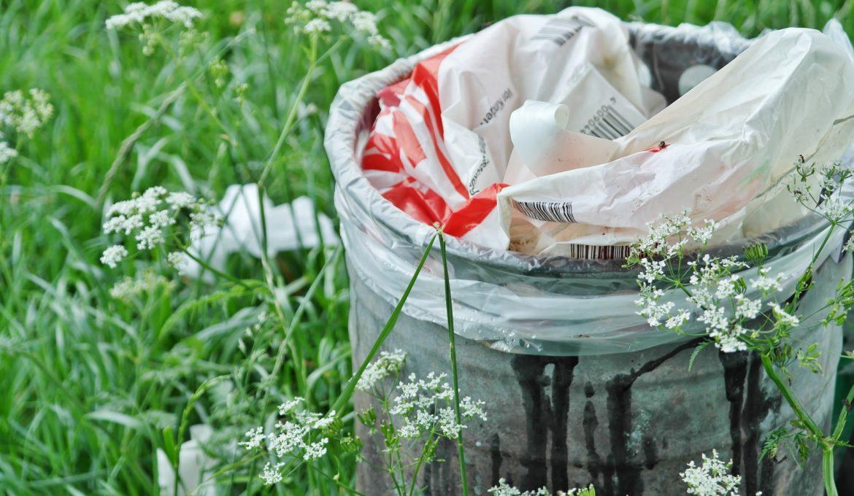 Projeto de Lei determina rastreabilidade de resíduos de agrotóxicos