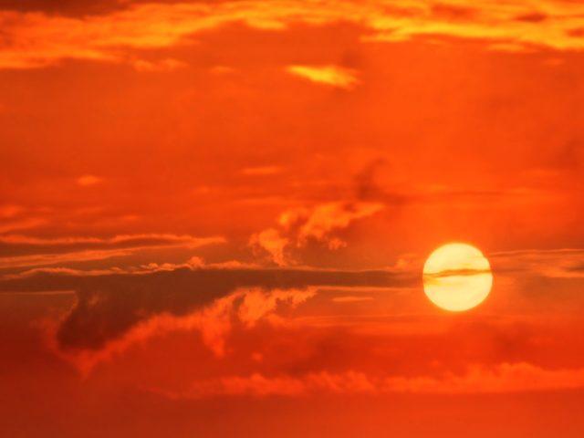OMS alerta para as ondas de calor e as orientações sobre os cuidados com a saúde