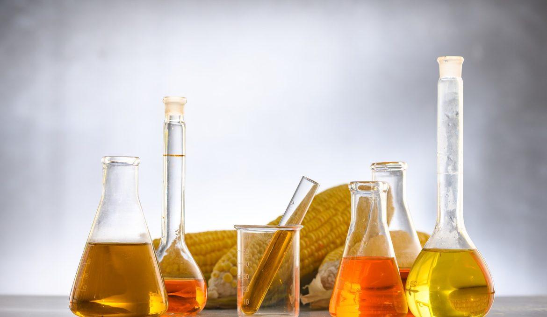 Brasil assina com a Índia memorandos de entendimento na área de biocombustíveis